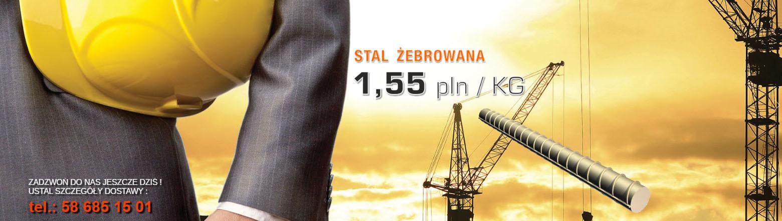 stal-zebrowana-luty2016